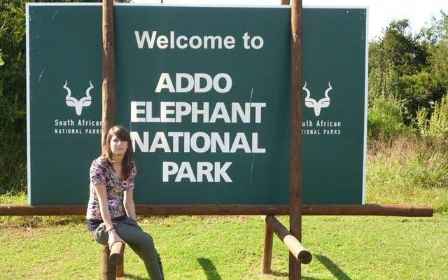 Addo Elephant Park Garden Route, Südafrika