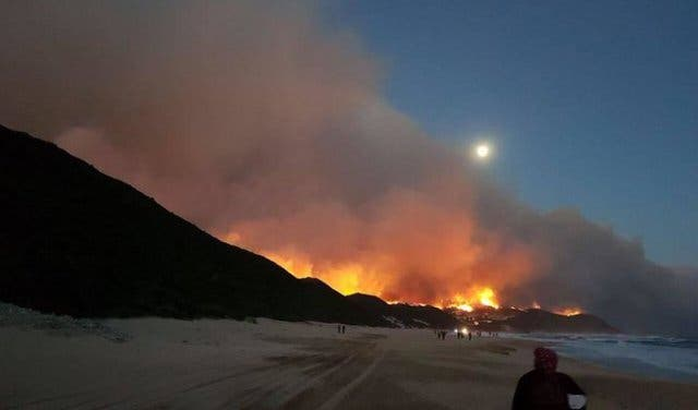 Feuer Knysna 2017 Südafrika