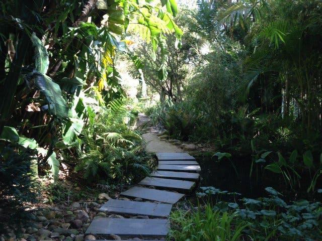 Weg im botanischen Garten Stellenbosch