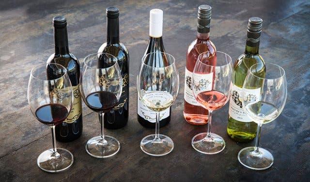 Winetasting Begleiter Kapstadt