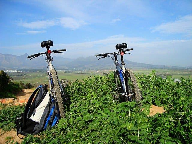 Weinland Kapstadt mit Fahrrad erkunden