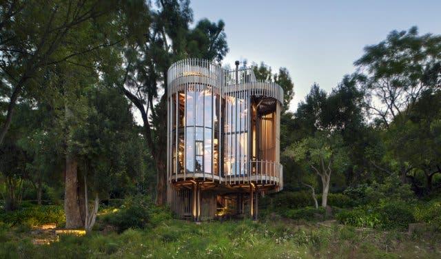 Genial Treehouse Paarman Kapstadt
