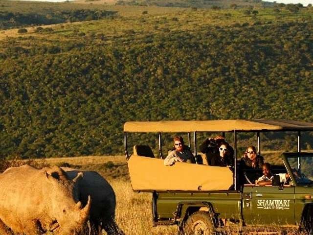 Safari an der Garden Route Südafrika