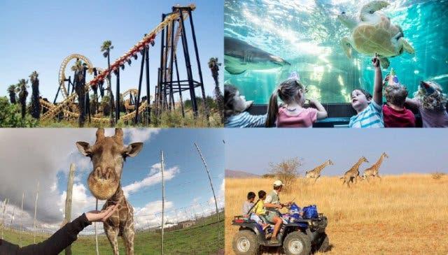 Urlaub mit Kindern in Kapstadt
