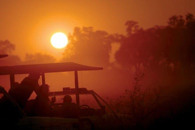 Safari auf der Garden Route