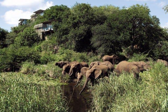 Addo Elephant Park Südafrika Garden Route