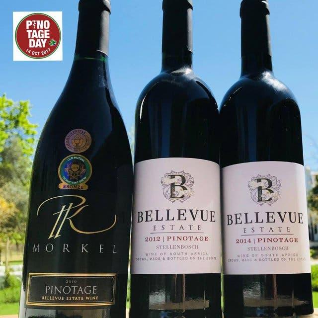 Pinotage Wein Südafrika