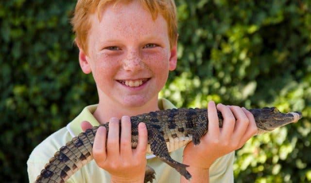 Le Bonheur Krokodil Farm