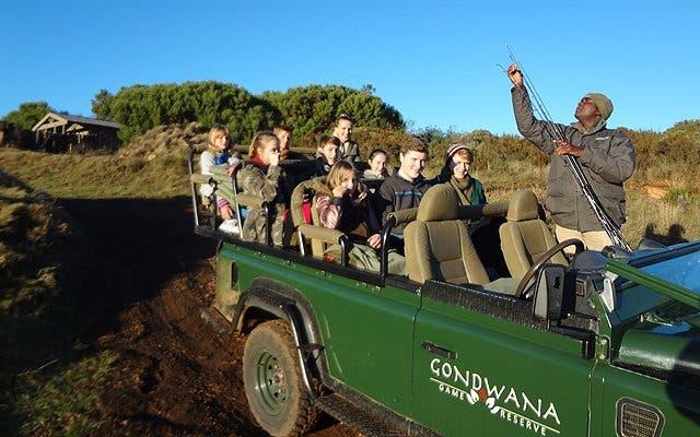 Safari Tierpark Südafrika