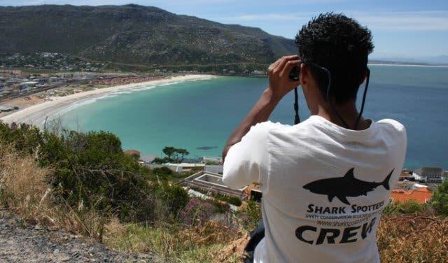 Shark Spotter App Kapstadt