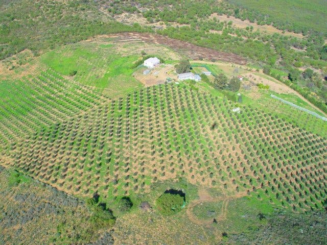 Kapstadt von oben Weinfarm