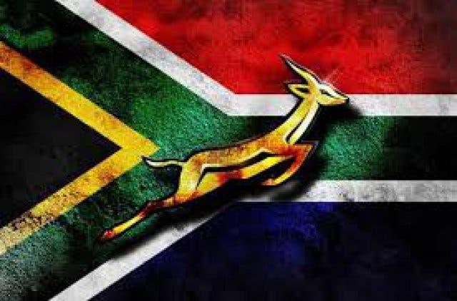Südafrikas Flagge