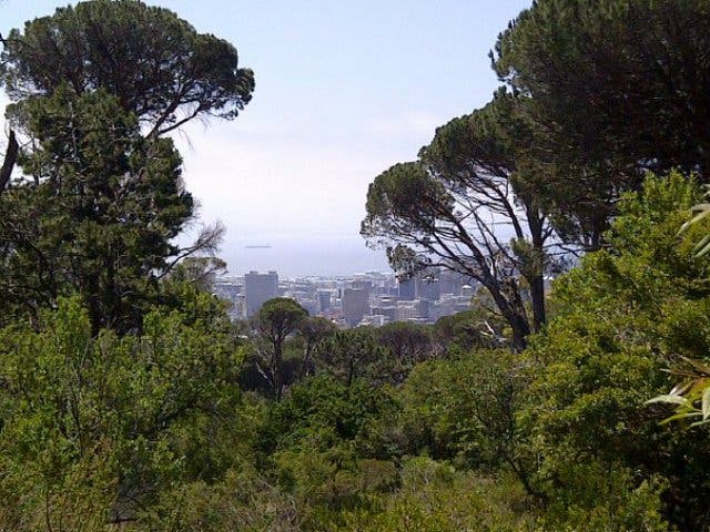 Signal Hill Kapstadt Urlaub
