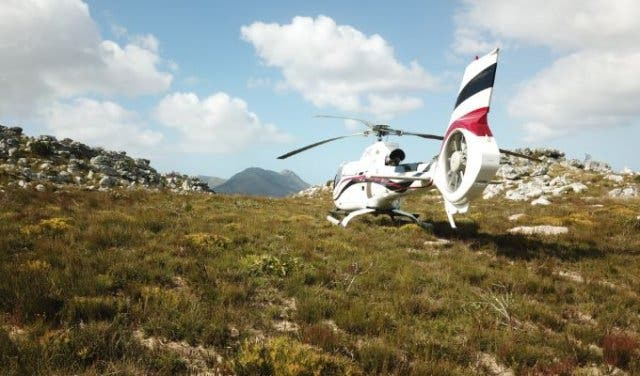 Helicopter Fynbos Tour