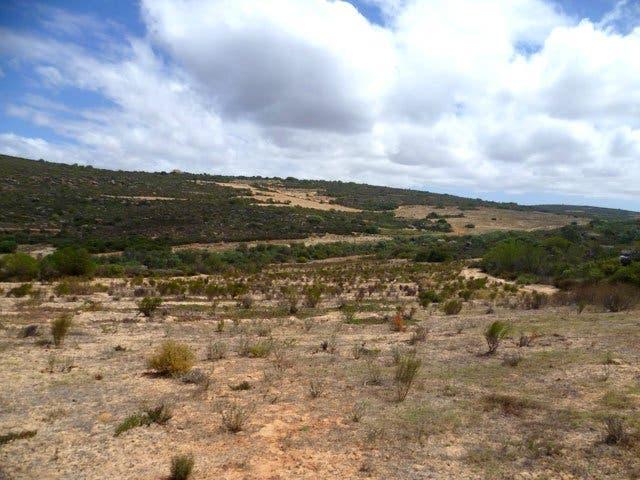 Landschaft Cederberge Südafrika
