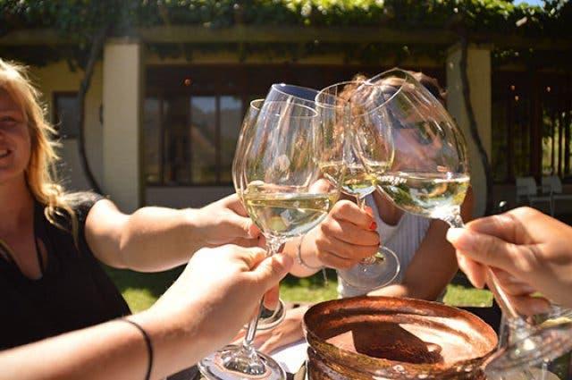 Wein Tasting Kapstadt
