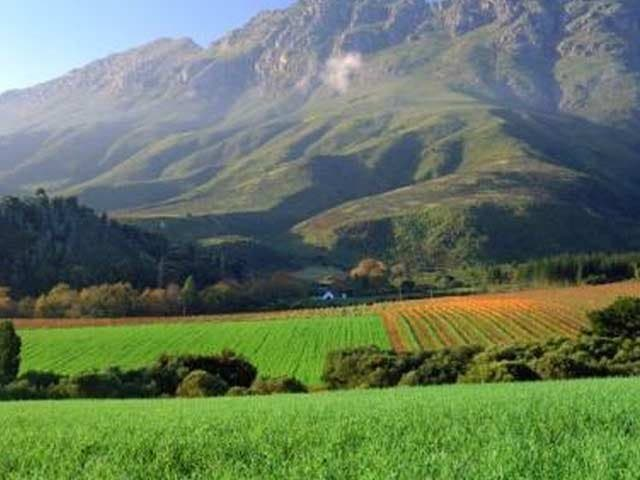Boschendal Wein Südafrika