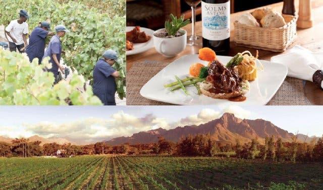 Solms Delta Weinfarm Franschhoek