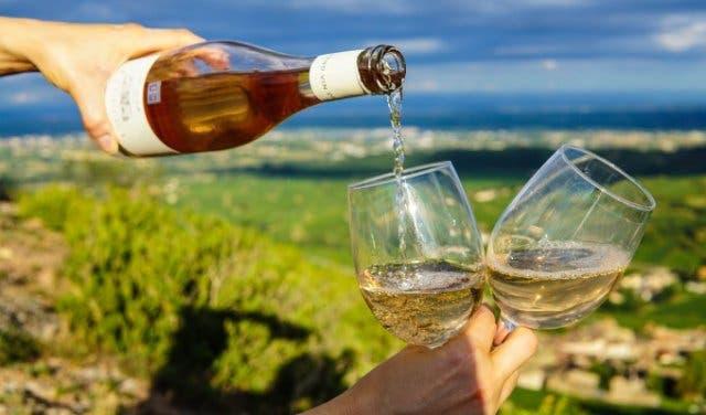 Platters Wine Guide 2019 2