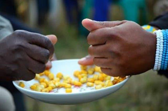 Linkobe südafrikanisches Essen Mais