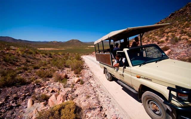 Tagessafari Krüger NAtional Park Südafrika