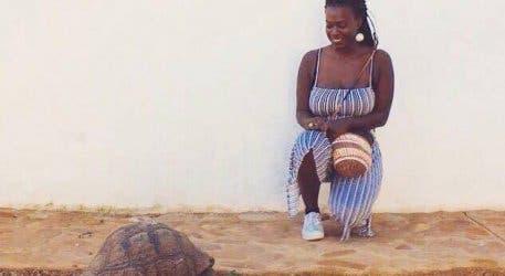 Babylonstoren Schildkröte
